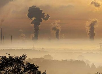 Global carbon emissions indicate 3-year slowdown with no growth